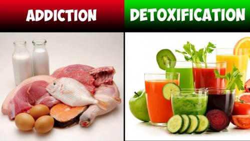 Addiction vs detox