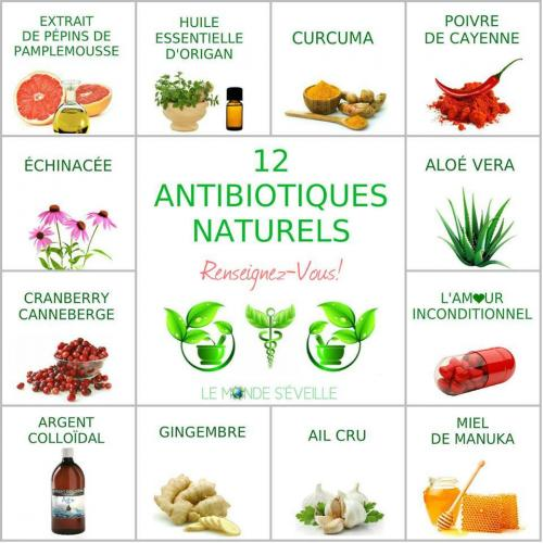 Antibiotique naturel