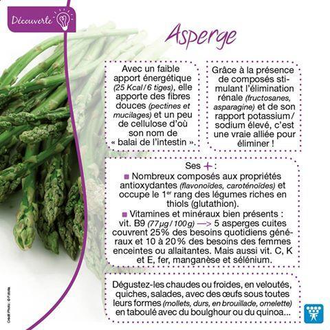 Asperge 1