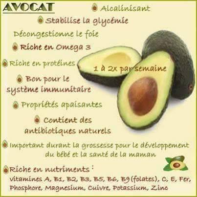 Avocat 2