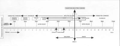 Biometredeboviscomplet