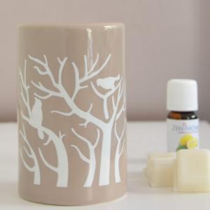 Brule parfum treebee