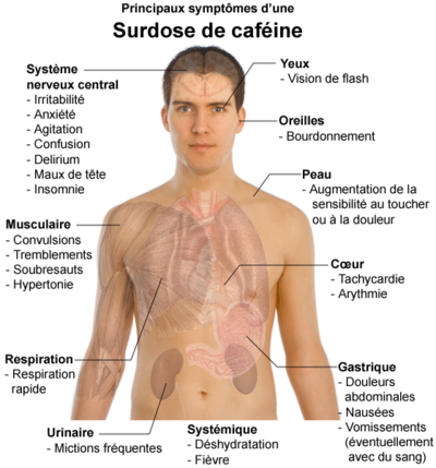 Cafeine surdose