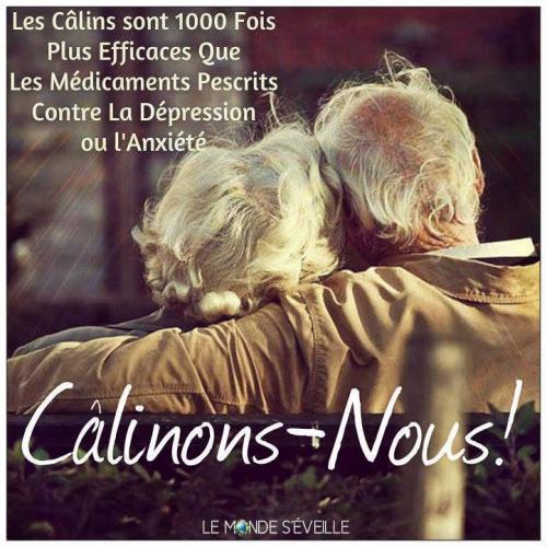 Calins 1