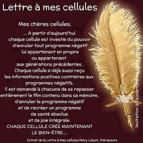 Cellule lettre