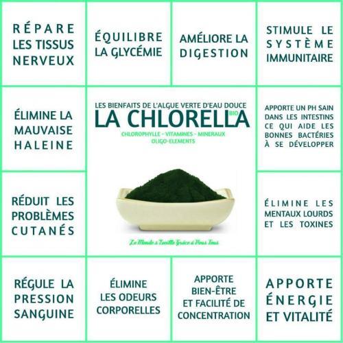 Chlorella1