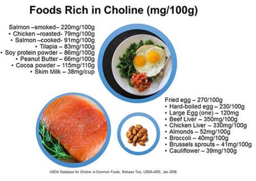 Choline aliments