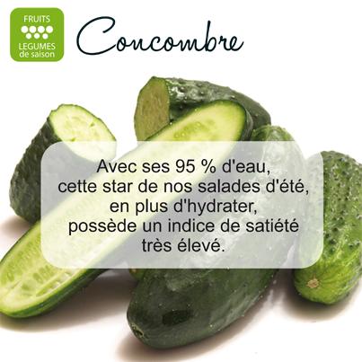 Concombre 1