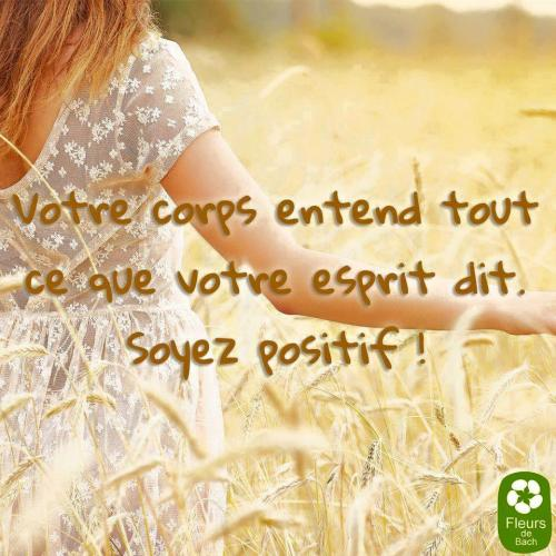 Corps entend