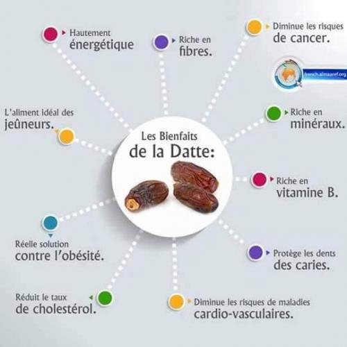 Datte1