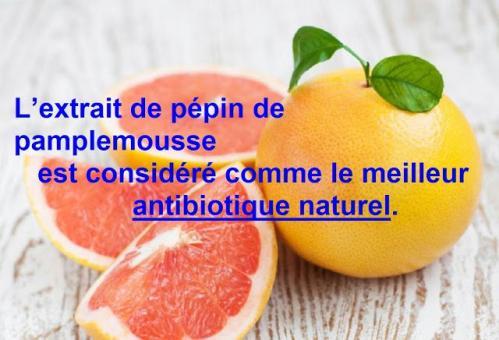 Extrait pepins pamplemousse 1