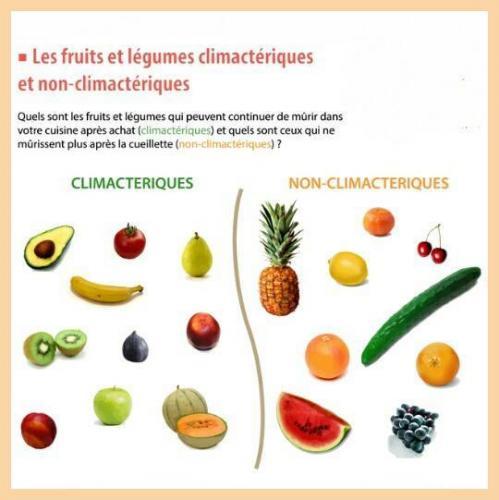 Fruits climaiques