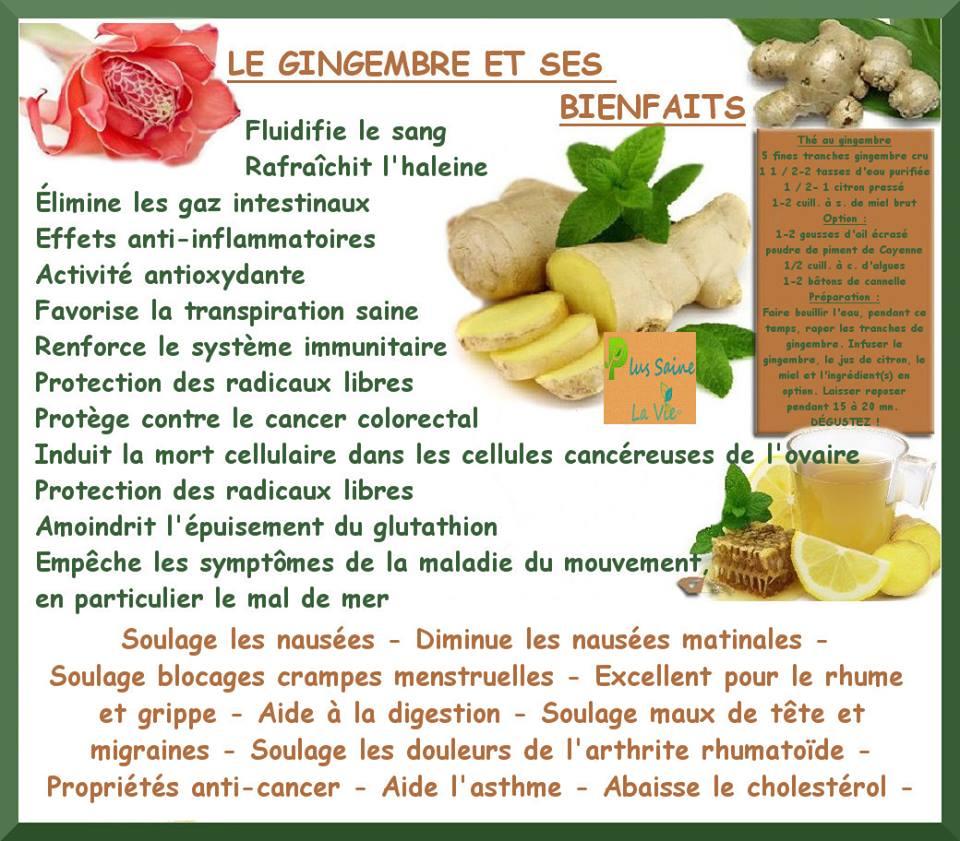 Les bienfaits du gingembre vertus - Comment utiliser le curcuma dans la cuisine ...