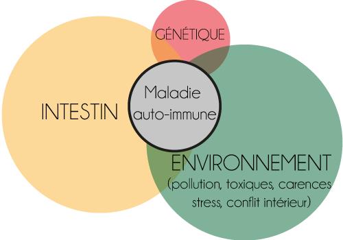 Intestin et maladie