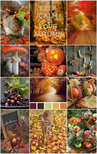 Keep calm love autumn