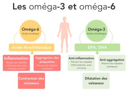 Les omega 3 et omega 6