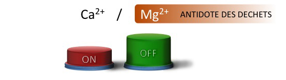 Magnesium bouton on off