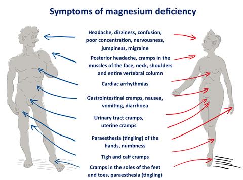 Magnesium deficiency1 large