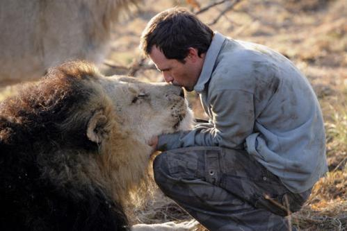 Man kiss lion 1