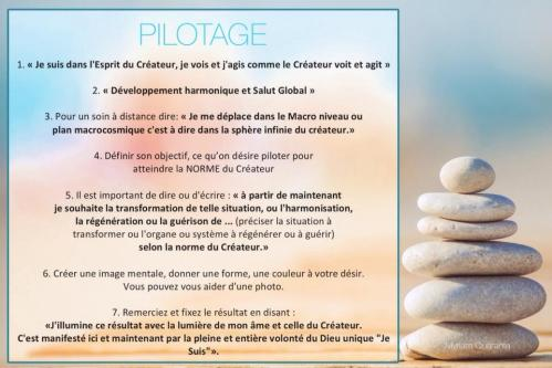 Pilotage 1