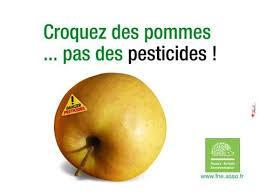 Pomme pesticide