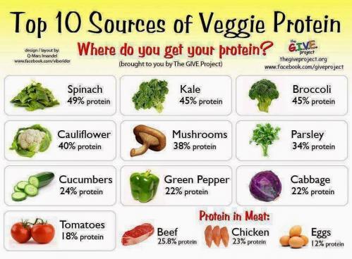 Proteines vege