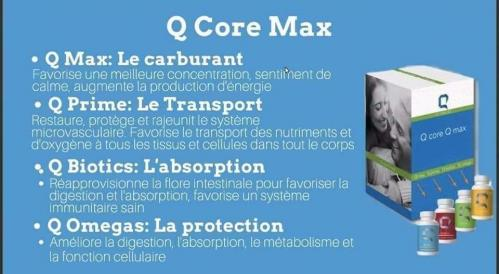 Qcore qmax detox 1