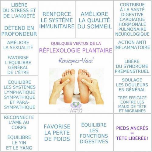 Reflexologie plantaire 1