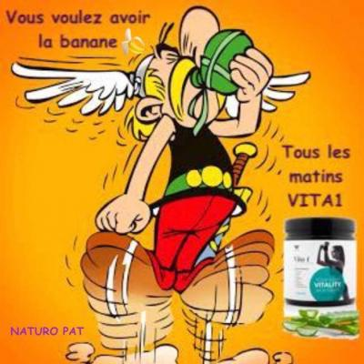 Vita 1 asterix