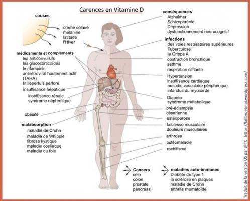 Vitamine d carences
